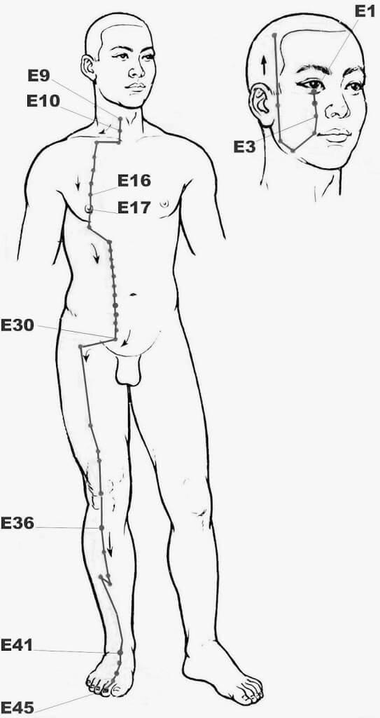 Méridien de l'Estomac, acupression