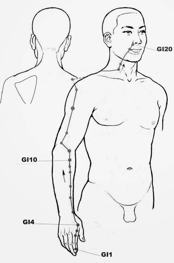 Méridien du Gros Intestin, acupression