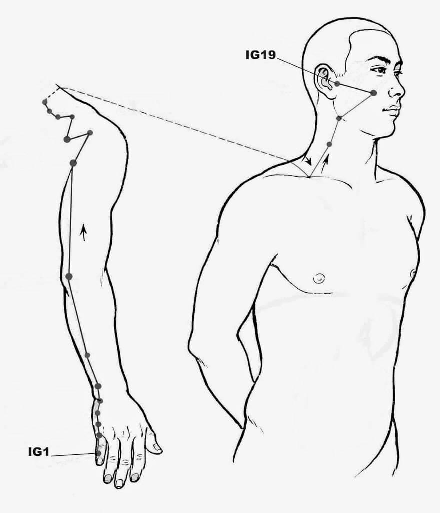 Méridien de l'Intestin Grêle, acupression