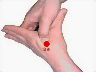 Extrêmement d'acupression GI4 (Gros Intestin 4) Hoku MO68
