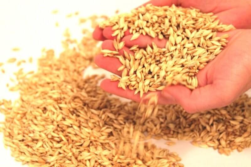 Matelas d'acupression naturel en fibres végétales