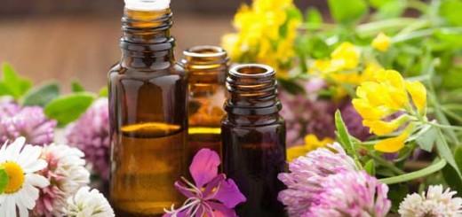 Les huiles essentielles (HE)